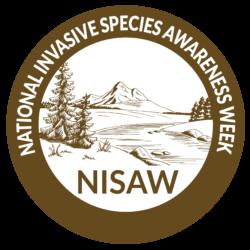 NISAW logo 2020-04